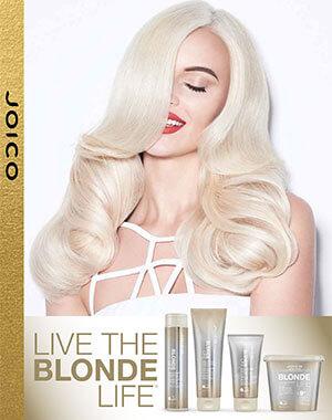blonde life fact sheet PDF cover
